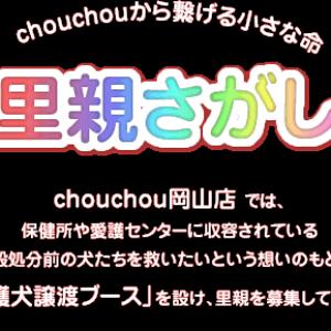 chou chou 岡山店