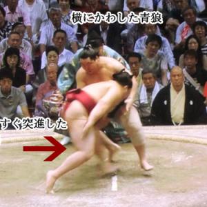 相撲 変化
