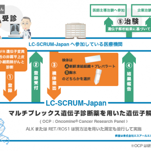 SCRUM-Japan