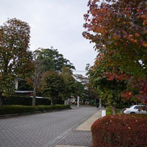 県立大田原高校