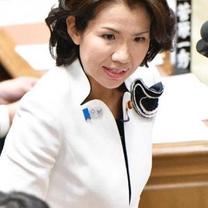 豊田真由子衆院議員