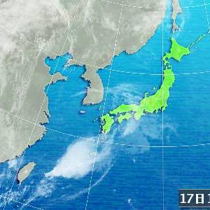 にんじん雲