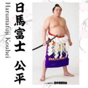 日馬富士引退会見