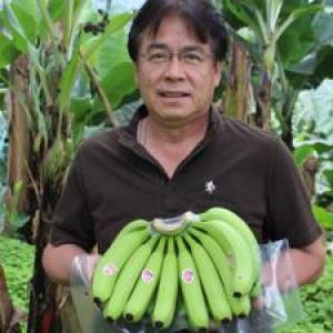 バナナ狩り