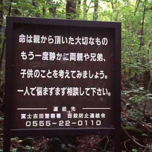 青木ケ原樹海